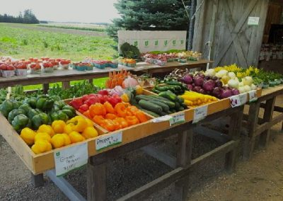 Peppers, cucumbers and vegetables from the farm market in Shelburne, Melancton
