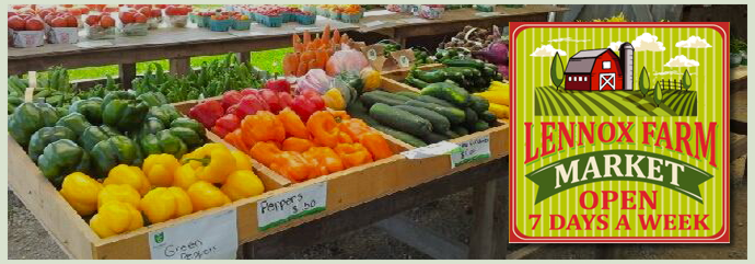 Vegetable Market Shelburne