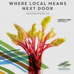 Headwaters Rhubarb grower Lennox Farms